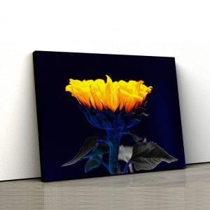 tablou canvas floral floarea soarelui