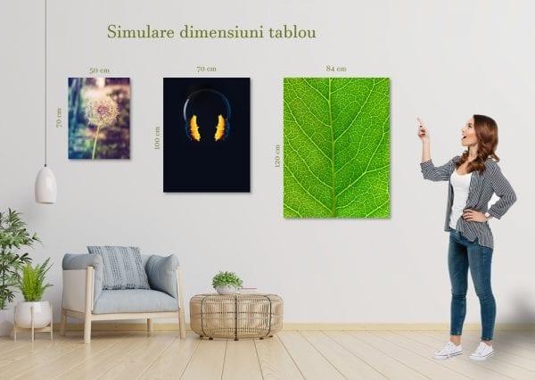 dimensiune tablou portret