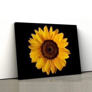 tablou canvas floarea soarelui landscape main