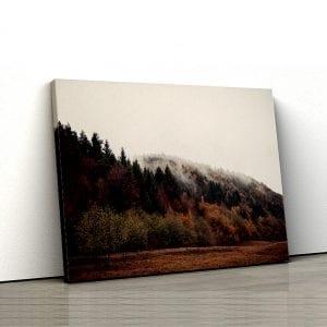 tablou canvas landscape main 139