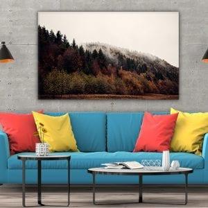 tablou canvas mare landscape camera 137