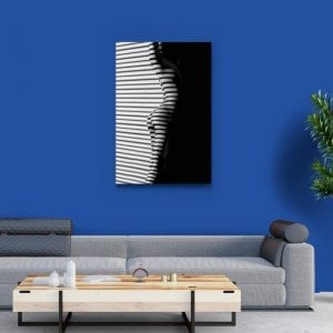 tablou canvas portret camera 14