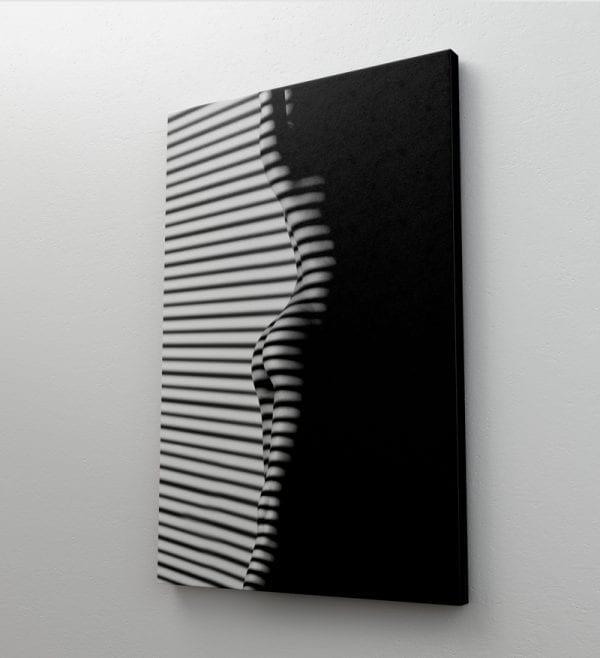 tablou canvas portret mediu perete 14