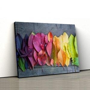Tablou canvas Frunze colorate 1