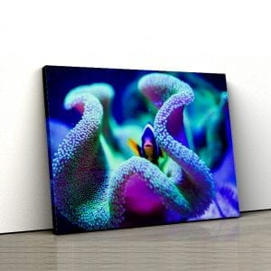 Tablou canvas floral Corali 2