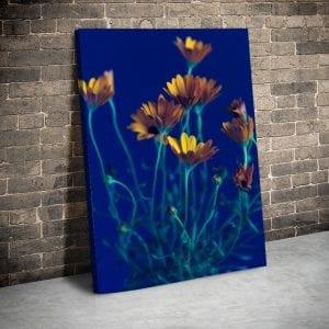 Tablou canvas floral Flori de camp 3