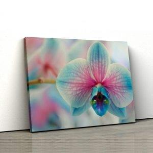 Tablou canvas floral Orhidee albastra 1