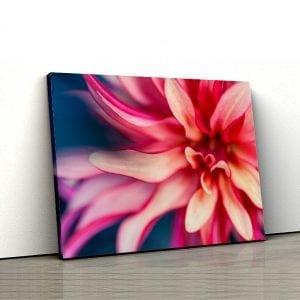 Tablou canvas floral Petale 2