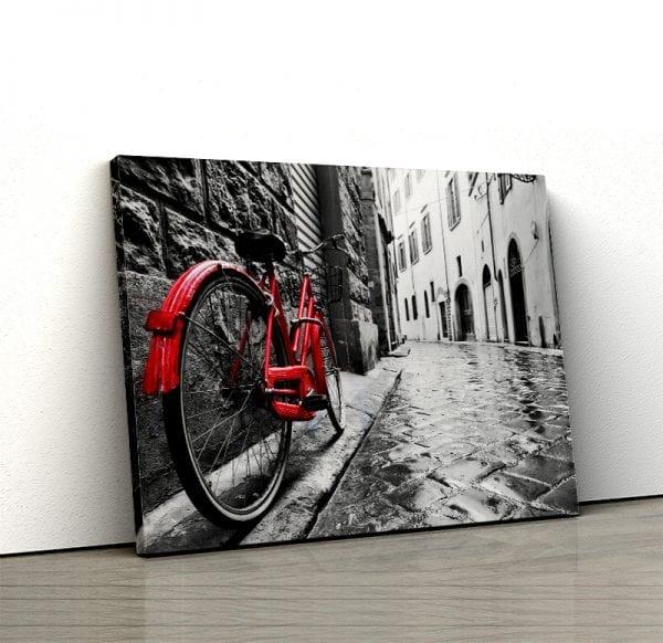 tablou canvas landscape main Tablou canvas bicicleta rosie