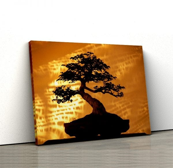 1 tablou canvas Bambus in lumina