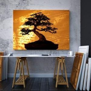 2 tablou canvas Bambus in lumina