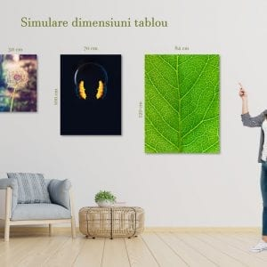 dimensiune tablou portret 2