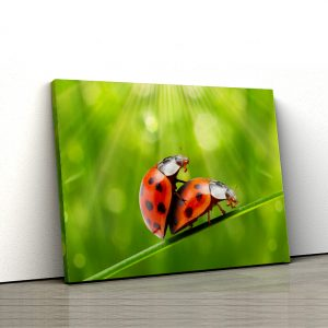 1 tablou canvas