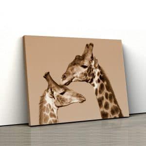 1 tablou canvas girafa cu pui