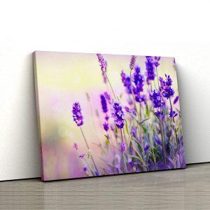 1 tablou canvas Tablou canvas Floral Fire de lavanda