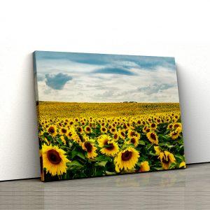 1 tablou canvas Tablou canvas Floral Lan de floarea soarelui