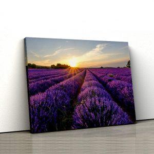 1 tablou canvas Tablou canvas Floral Lan de lavanda