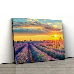 1 tablou canvas Tablou canvas Floral Lan de lavanda la apus de soare