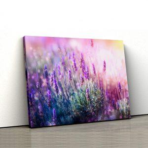 1 tablou canvas Tablou canvas Floral Lavanda in raza de soare