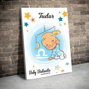 3 tablou canvas Baby Balanta