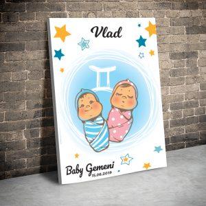 3 tablou canvas Baby Gemeni