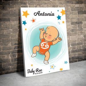 3 tablou canvas Baby Rac