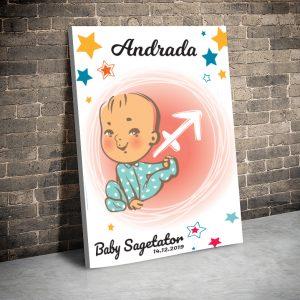 3 tablou canvas Baby Sagetator