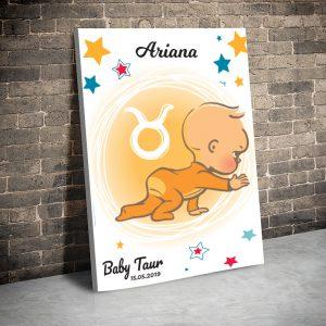3 tablou canvas Baby Taur