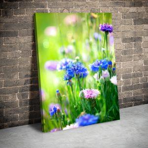 3 tablou canvas Tablou canvas Floral Flori de camp