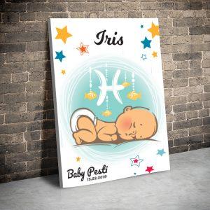 3 tablou canvas Zodii Baby Pesti