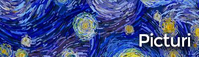 tablouri canvas picturi 3