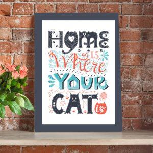 CVS734 Your cat 2