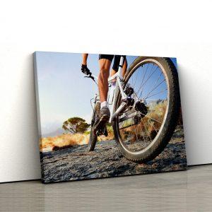 CVS739 Biciclist offroad 1