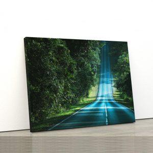 CVS809 Tablou Canvas Peisaj Forest way 1