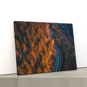 CVS810 Tablou Canvas Peisaj Going along mountain 1