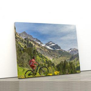 CVS811 Tablou Canvas Peisaj Woman electric mountainbike 1