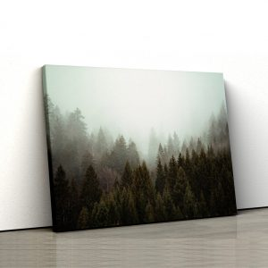 CVS816 Tablou Canvas Peisaj Forest covered by creeping mist 1